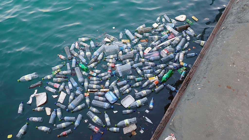 Plastica monouso: nuove norme europee per ridurre i rifiuti marini