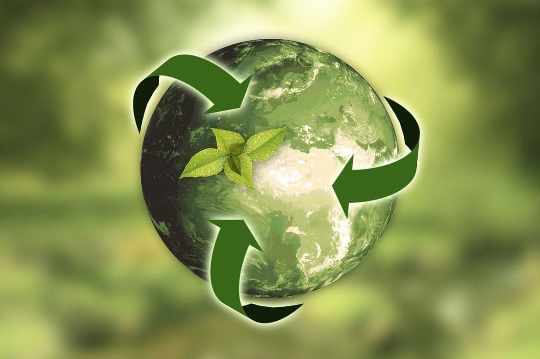 Il nuovo piano d'azione dell'Europa per sviluppare una bioeconomia circolare e sostenibile